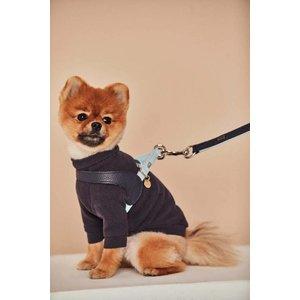 Hello Jello Dog Harness Navy