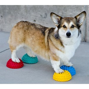 FitPAWS Paw Pods