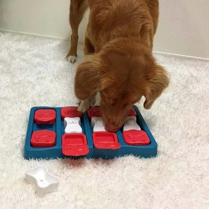 Nina Ottosson Dog Puzzle Dog Brick