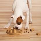 Nina Ottosson Hondenpuzzel Dog Smart Composiet