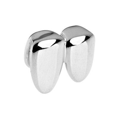 Zilveren tand