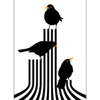 Lina Johansson design poster three blackbirds on stage