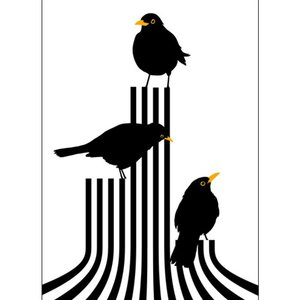 Lina Johansson design poster three blackbirds on stage