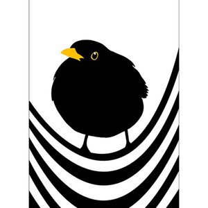 Lina Johansson design poster king blackbird