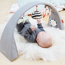 Baby gym and play mat