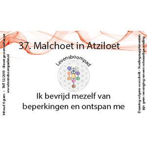Levensboompaden 37 Malchoet in Atziloet