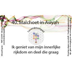 Levensboompaden 40 Malchoet in Asiyah