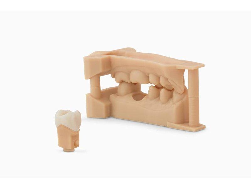 Formlabs Dental Model v1 Resin Cartridge 1L voor Form 2