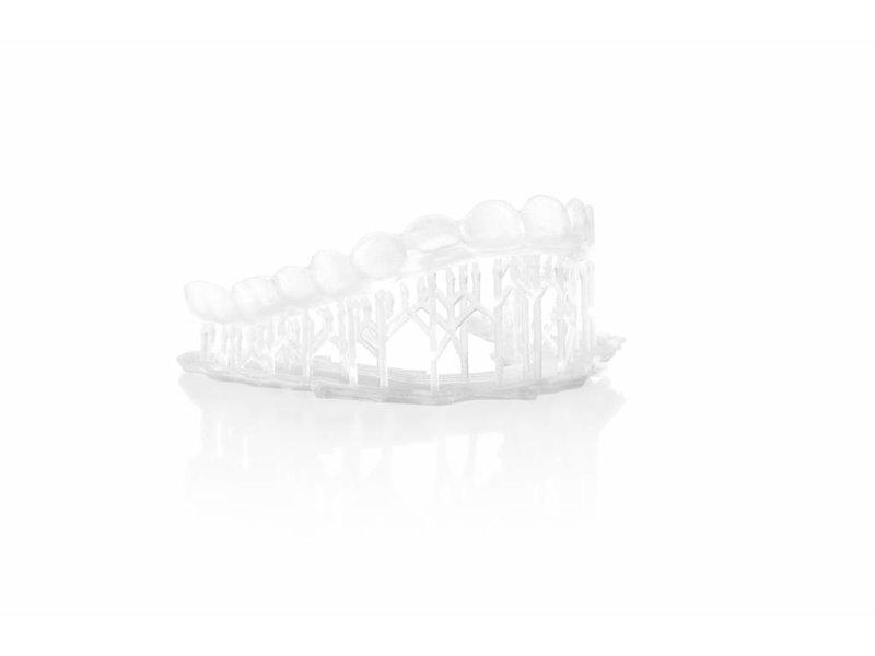 Formlabs Dental LT resin v1 1L Form 2