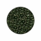 Rocailles Miyuki 11/0 - Kaki Lustré - N°2539L - 15gr
