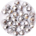 Facetkraal - Zilver - Glas - 6mm