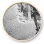 Colortricx - Silver