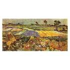 Vincent van Gogh - Ebene bei Auvers