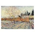 Vincent van Gogh - Obstgarten mit Zypressen