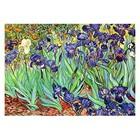 Vincent van Gogh - Stilleben mit Schwertlilien