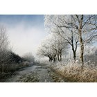 Winterlich