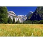 Wiesen-und Berglandschaft