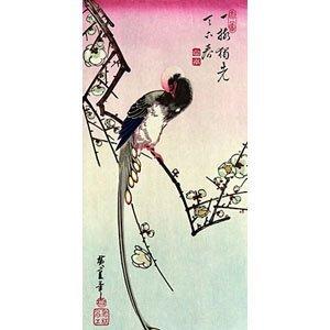 Hokusai Katsushika - Ume ni Onagadori