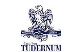 Tudernum