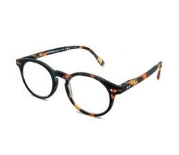 Leesbril Readloop  Tradition Dark Havanna 2601-02