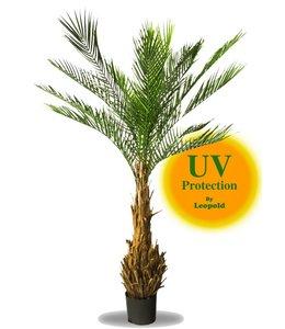 UV Kunstpalm Phoenix 170