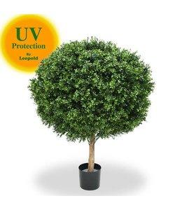 UV Buxus Bol 100