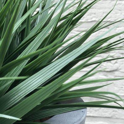 Kunstgras planten