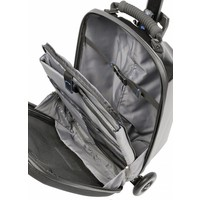 Micro Luggage Scootcase