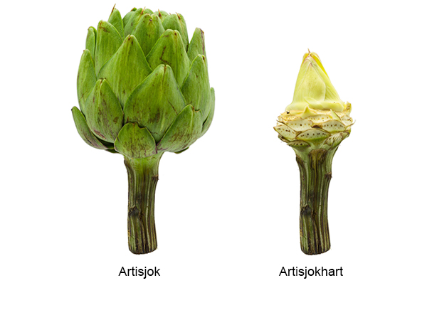 Orange Care Artichoke Shots - Artisjok en Artisjokhart