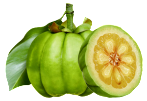 Garcinia Cambogia (vrucht extract)