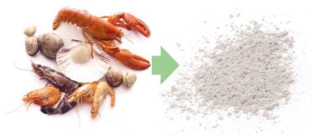 Detox Pleisters Bestanddelen - Chitosan