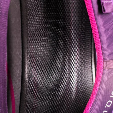 Osprey Palea - 26 liter laptoprugzak dames - Mariposa Purple