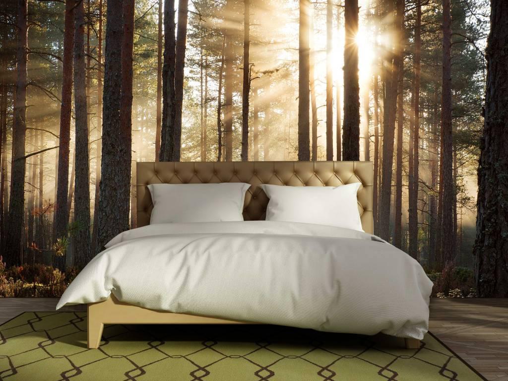 Fotobehang In Slaapkamer : Behang in de slaapkamer tips en inspiratie