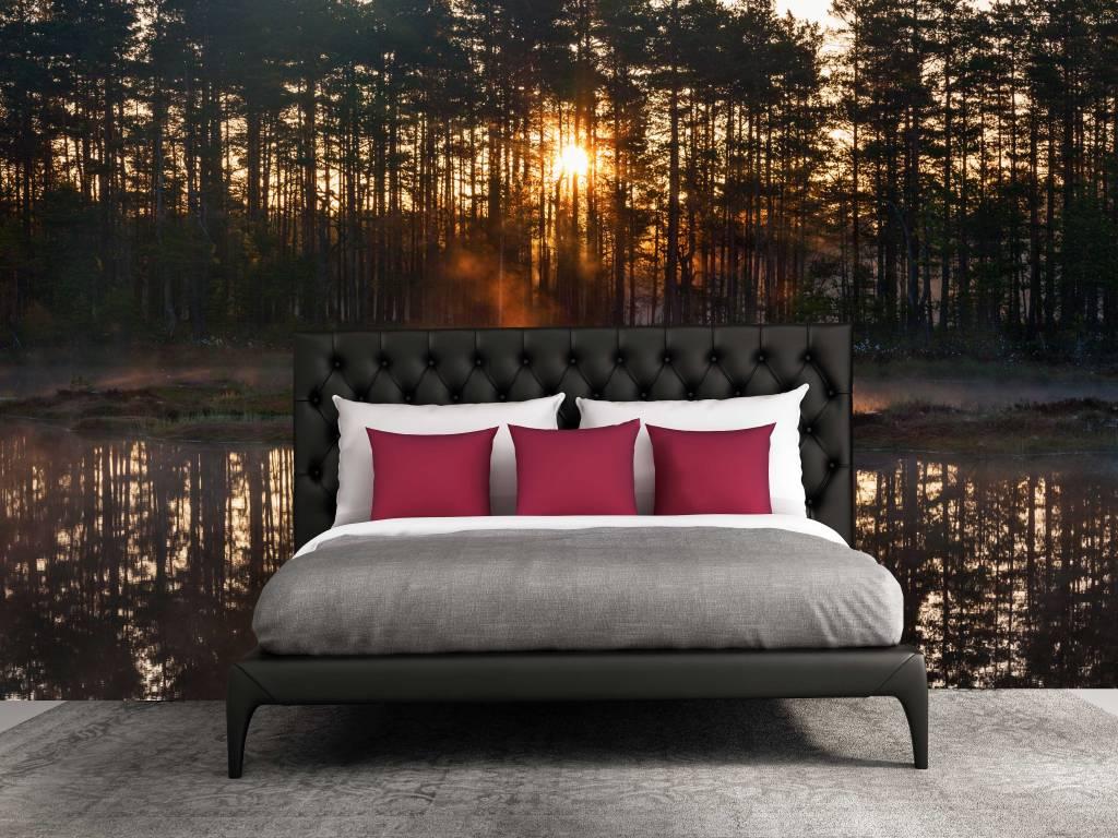 Slaapkamer Met Fotobehang : Fotobehang Bos zonsondergang – Walldesign56.com