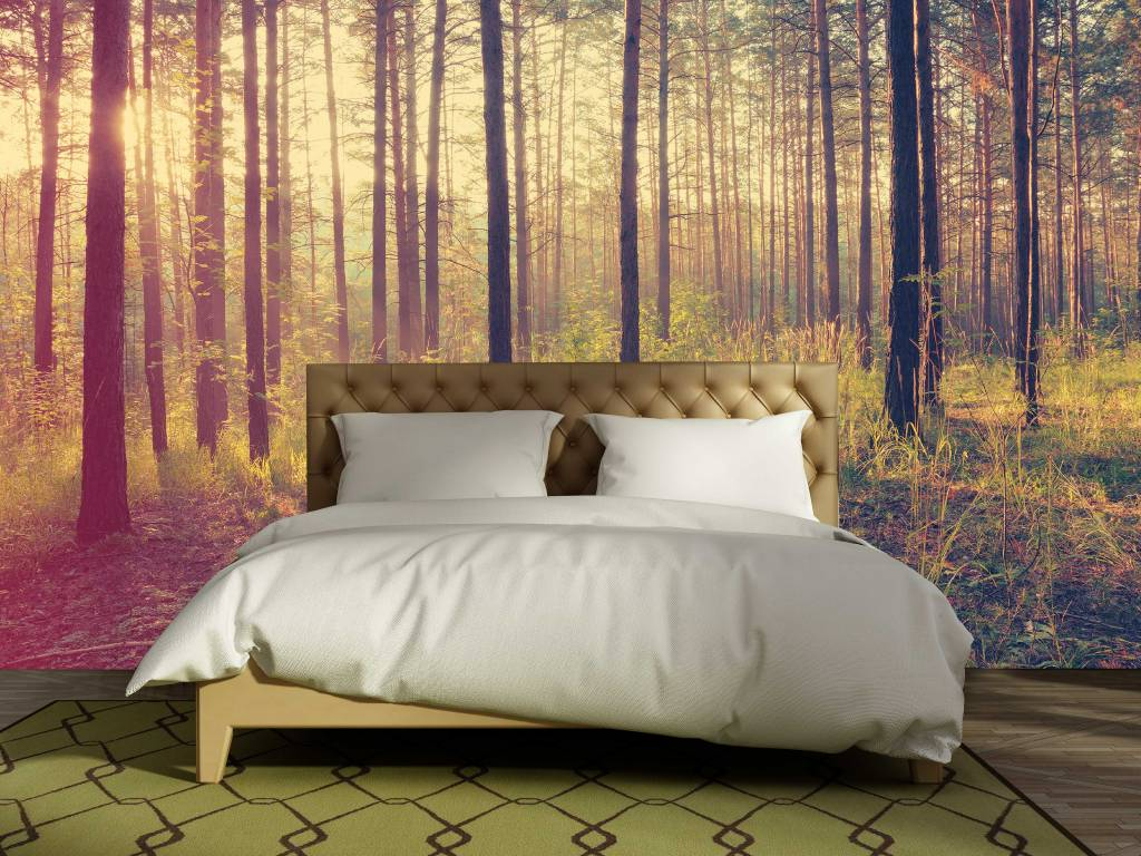 mural forest sunset autumn walldesign56 wall decals murals mural forest sunset autumn