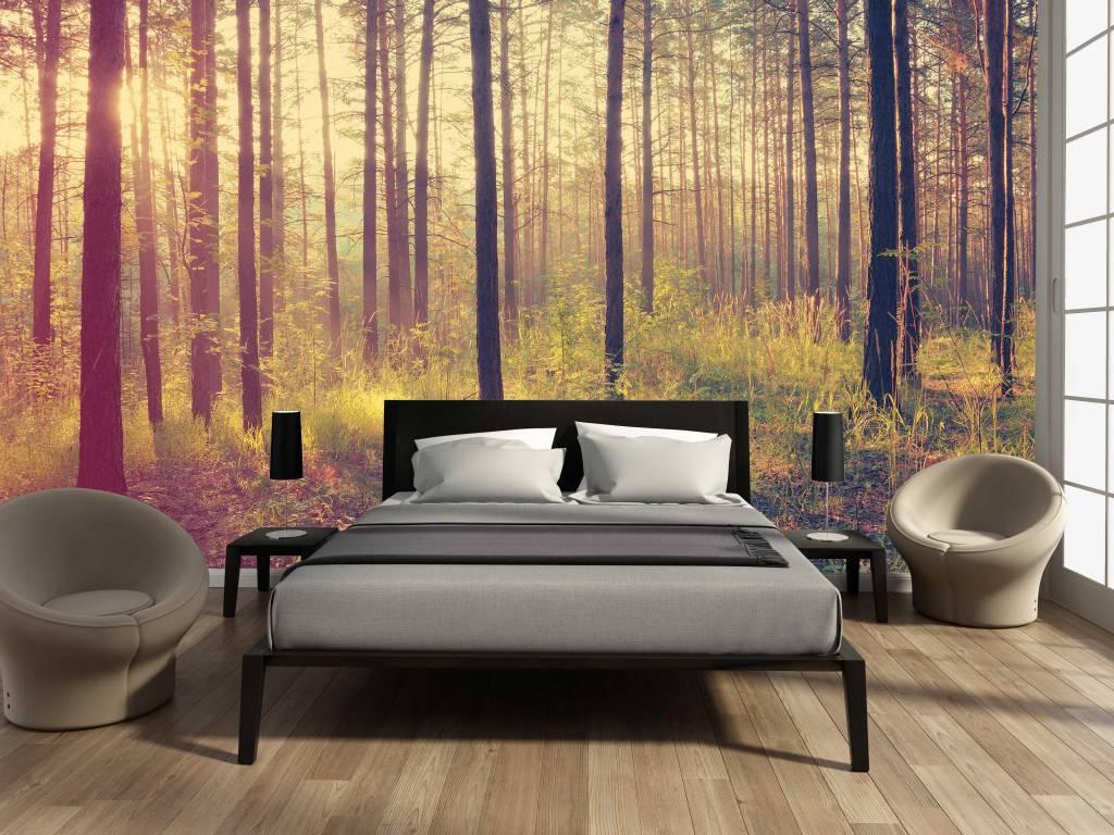 Mural Forest sunset - Autumn - Walldesign56 Wall Decals - Murals ...