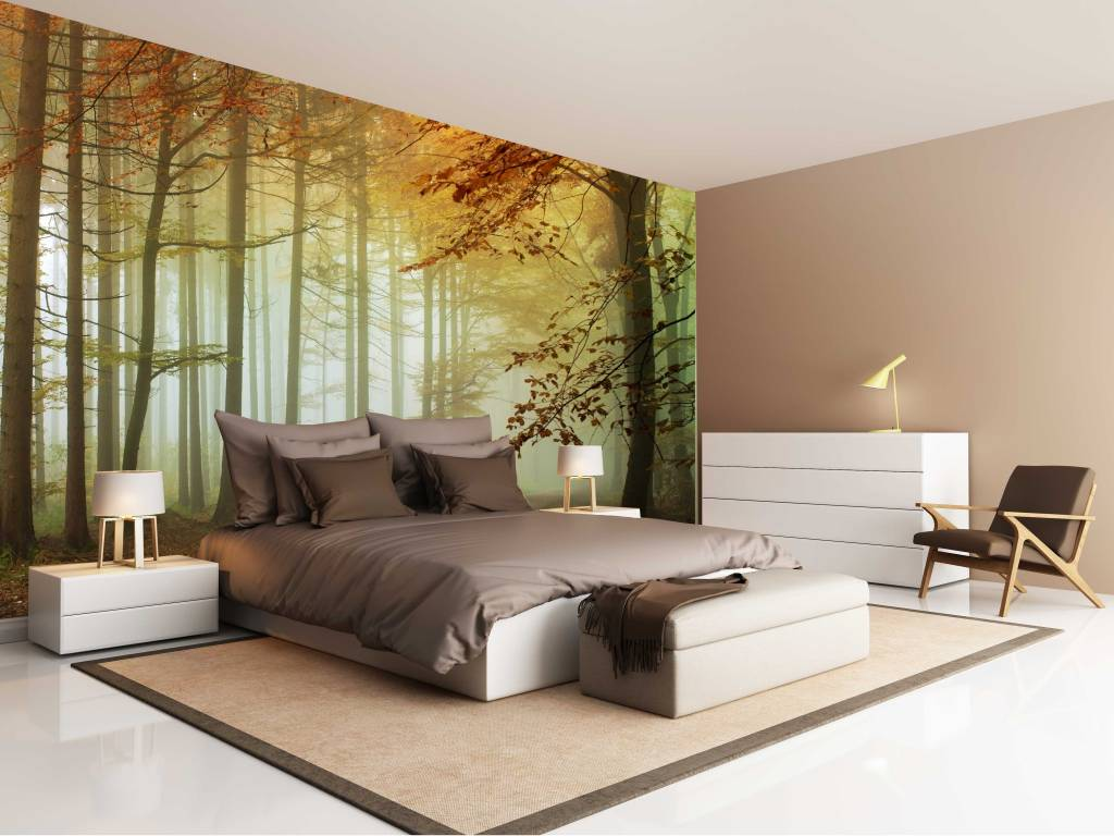 Fotobehang Bos zonsondergang - Herfst 2 - Walldesign56 - Muurstickers ...