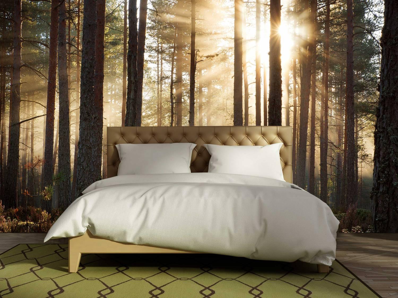 Fotobehang Keuken Design : Waan je in een oase van rust met een Fotobehang Bos – Walldesign56.com