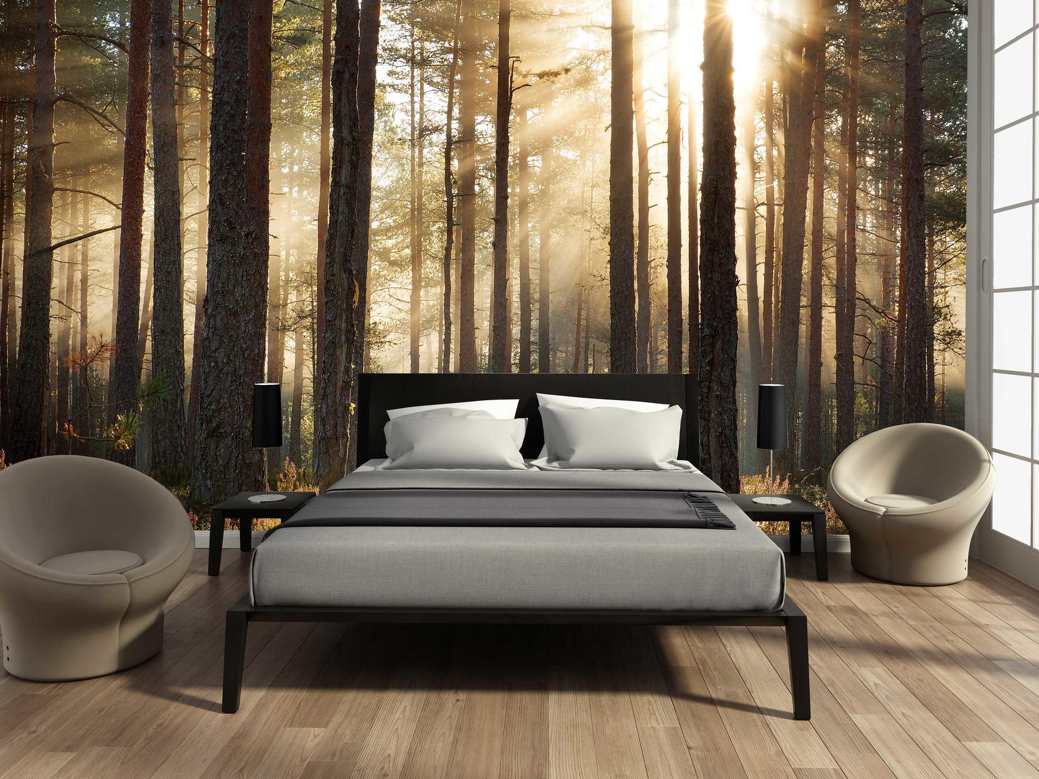 Waan je in een oase van rust met een fotobehang bos - Behang materieel effect ...