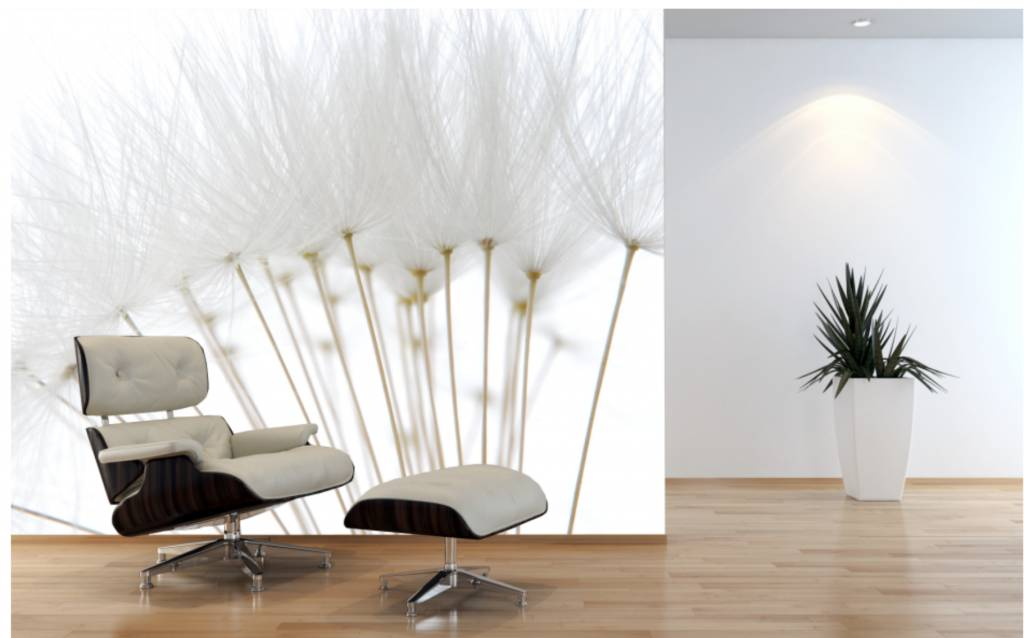 Mural dandelion walldesign56 wall decals murals posters for Dandelion wall mural