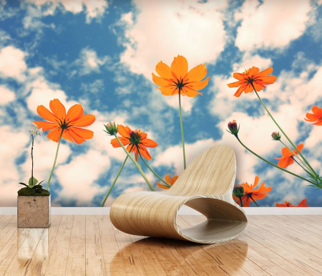 Mural cosmos flower walldesign56 wall decals murals for Mural of flowers