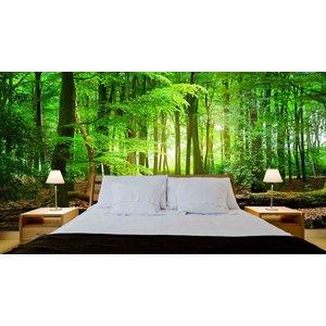 Mural Wald Sonnenaufgang 4
