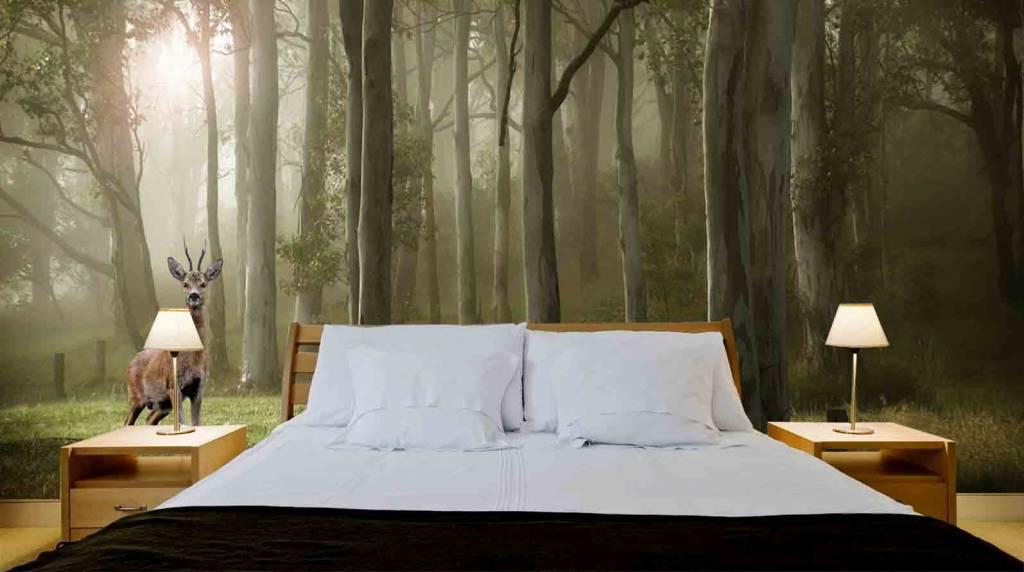 mural wald mit reh walldesign56 wandtattoos fototapete poster. Black Bedroom Furniture Sets. Home Design Ideas