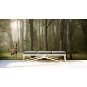 Mural Forest with deer
