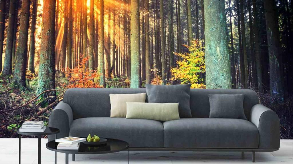 Mural forest autumn walldesign56 wall decals murals for Autumn forest 216 wall mural