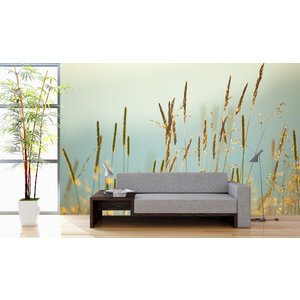 Mural Meadow Flowers Vintage