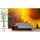 Mural Sunflower
