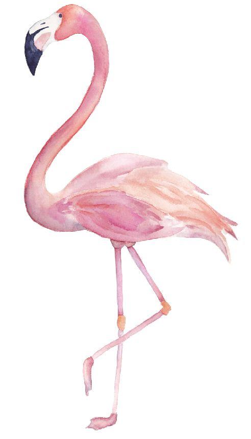 Wandaufkleber flamingo walldesign56 wandtattoos - Flamingo wandtattoo ...