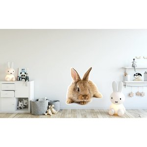 Wall Sticker Rabbit