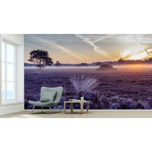 Photo Wallpaper Defrost